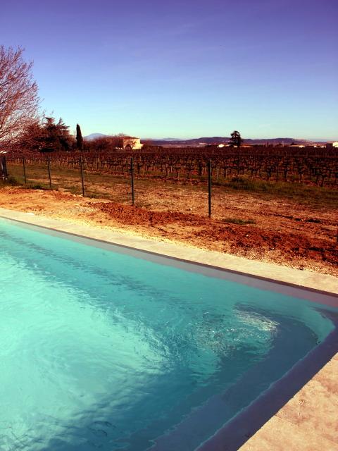Zuid Frankrijk vakantie zwembad